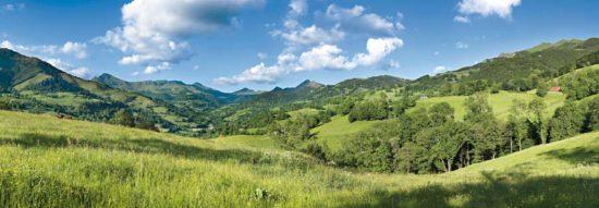 Vallée de La Jordanne, été, Cantal - Tirage photo