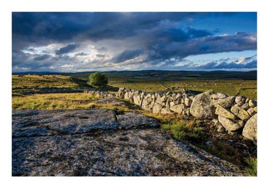 Mur de pierre, Aubrac - Tirage photo